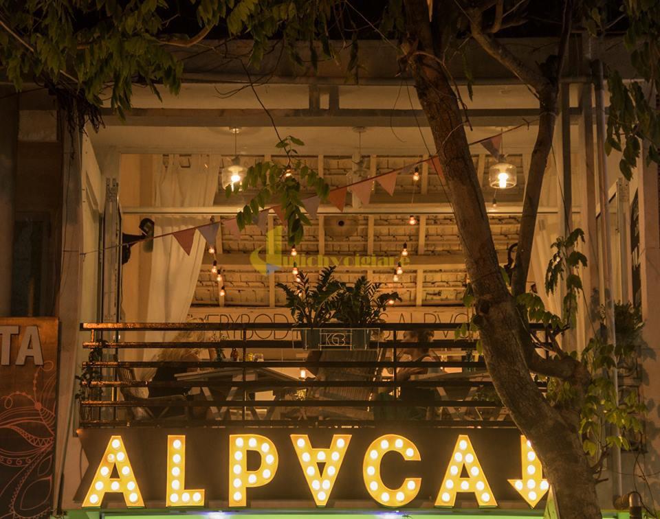 Alpaca Top 10 Quán Cafe Nha Trang Đẹp Lung Linh