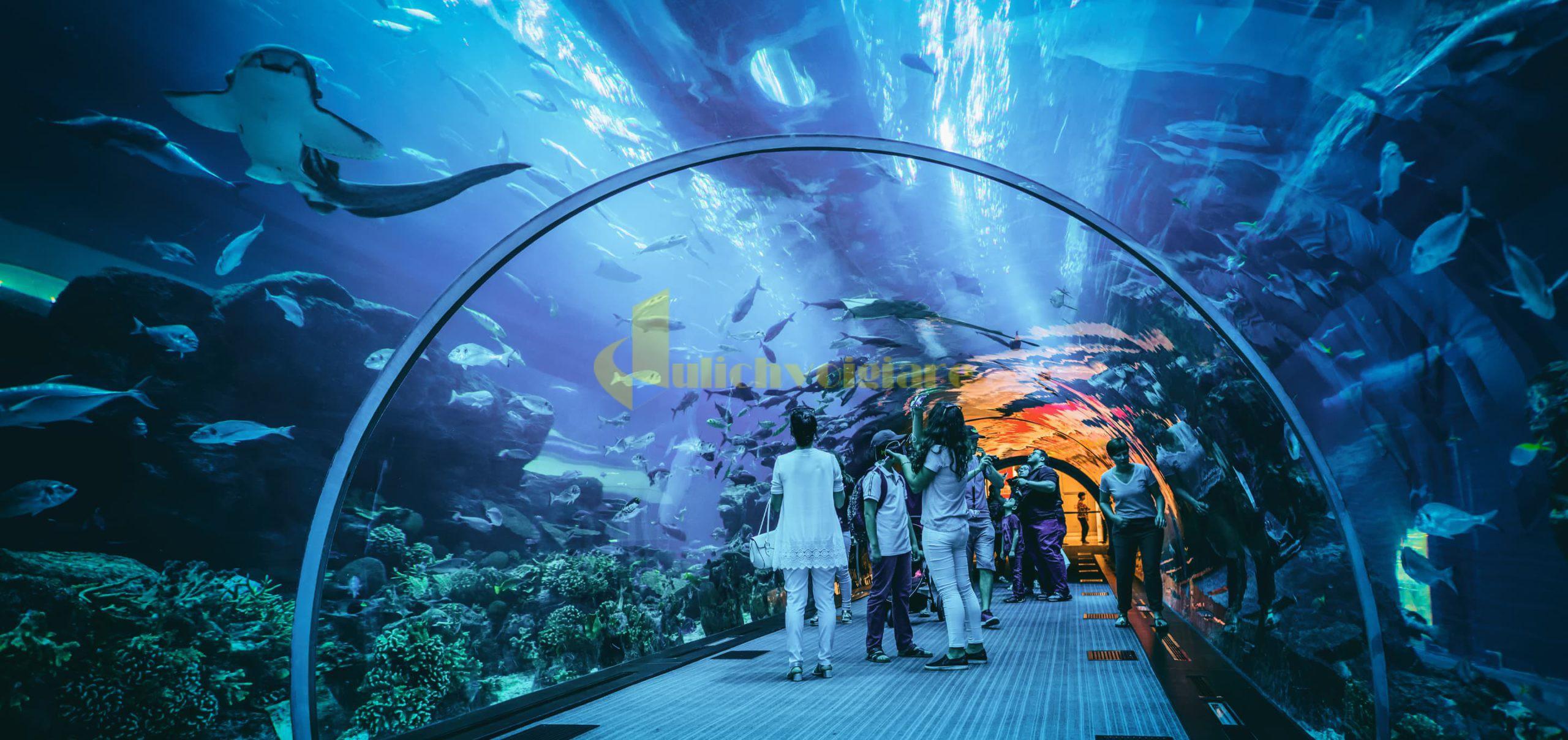 quảng-trường-đại-dương-scaled-1 Lý Do Đến Với VinWonders Nha Trang
