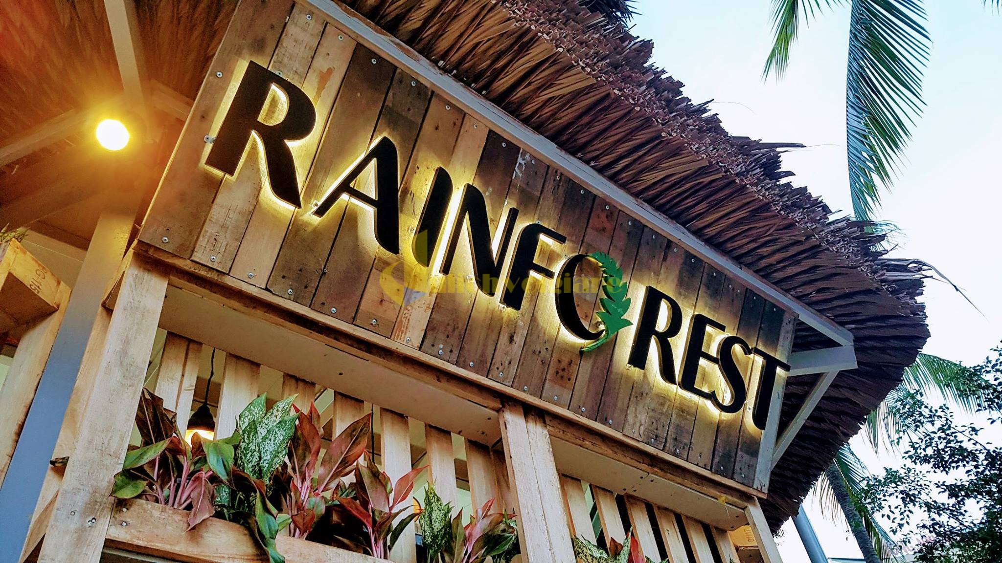 rainforest-nha-trang Top 10 Quán Cafe Nha Trang Đẹp Lung Linh