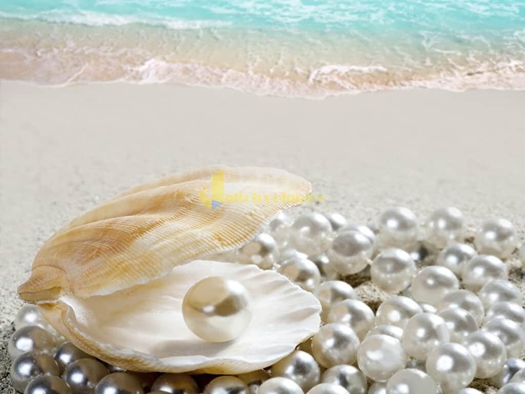 choi-gi-o-con-dao-internet13 Trời nắng nóng quá rồi , Khám phá Côn Đảo biển xanh , cát trắng , nắng vàng thôi nào ?