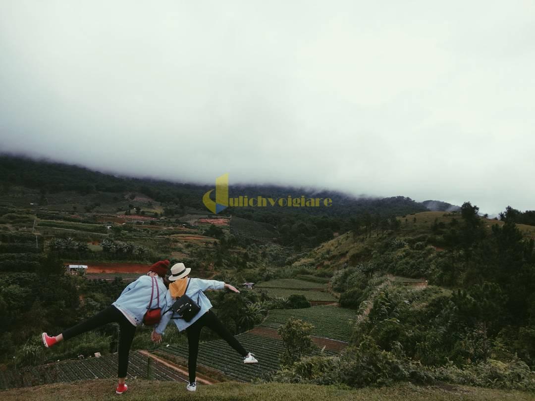 langbiang-7 Langbiang - Hành trình chinh phục đỉnh núi cao nhất Đà Lạt