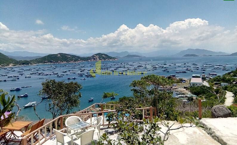 quán-cf-đồi-gió Bình Ba - Quốc đảo Tôm Hùm Số 1 Khánh Hòa