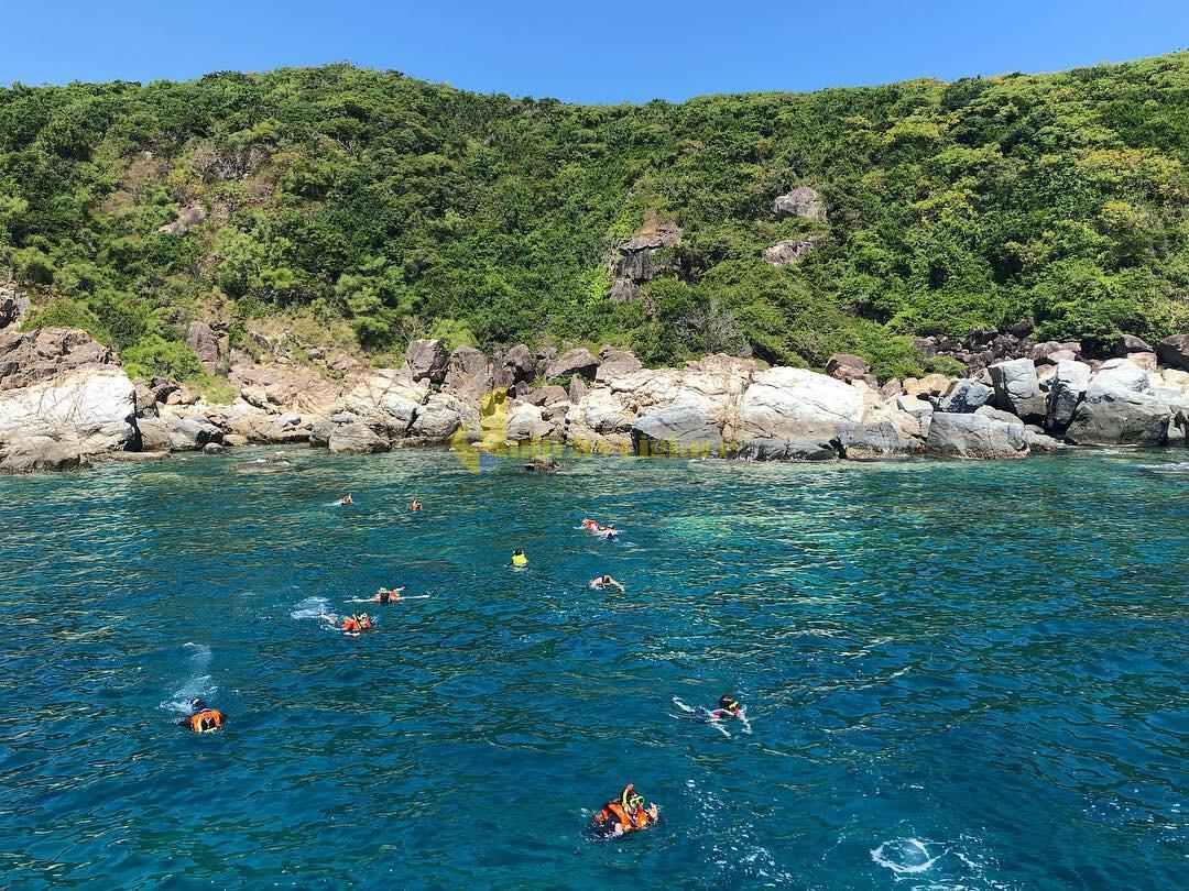 tắm-biển Review du lịch Hòn Mun - 1 trong 4 Vịnh đẹp ở Nha Trang